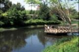 doubougawa-park